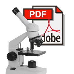PDF malware adopts another obfuscation trick in attempt to avoid detection