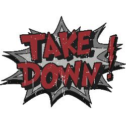 Take Down: Cyber Monday sting seizes 132 counterfeit-selling sites