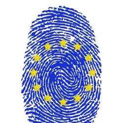 EU's cybersecurity strategy gets harsh criticism by data protection advocate