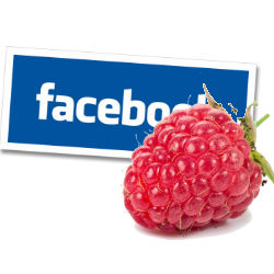 US girl loses her father $80K settlement with Facebook raspberry