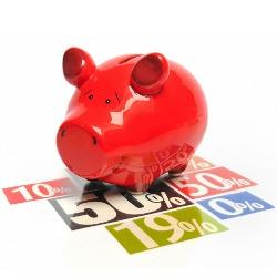 Pig. Image courtesy of Shutterstock.