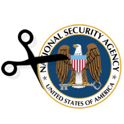NSA surveillance funding cuts OKed by US House