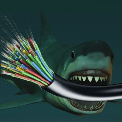 Shark attack! Google wraps broadband cables in Kevlar vests