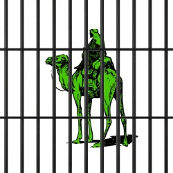Silk Road suspect Ross Ulbricht hit with three new drug charges