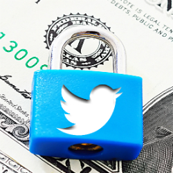 Understanding Twitter's security and privacy settings