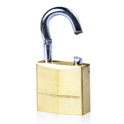 Broken lock. Image courtesy of Shutterstock