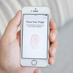 Police can demand fingerprints but not passcodes to unlock phones, rules judge