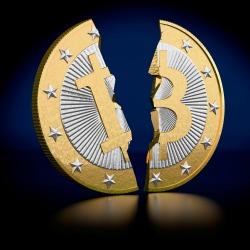 cavirtex bitcoin