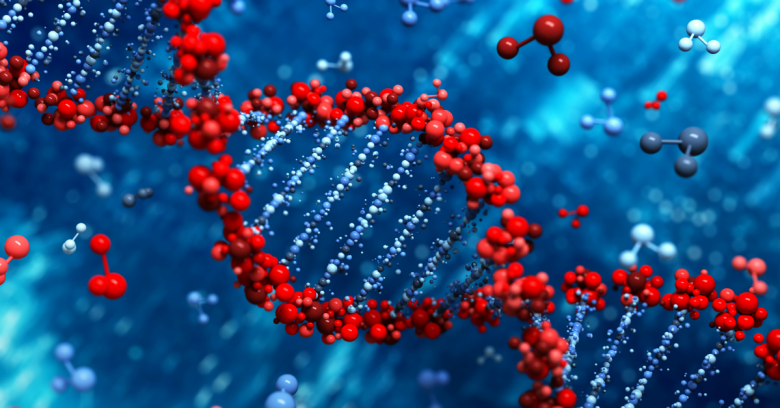 DNA. Image courtesy of Shutterstock.