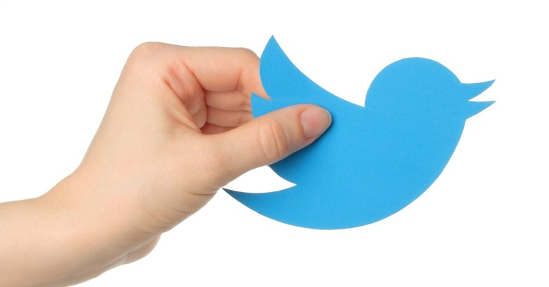 Twitter bird. Image courtesy of rvlsoft / Shutterstock.