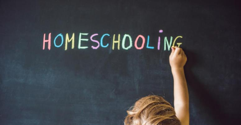 Home schooling – how to stay secure